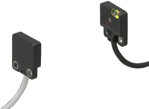 Panasonic EX21APN Einweg-Lichtschranke Fronttyp hellschaltend 12 - 24 V/DC 1 St.