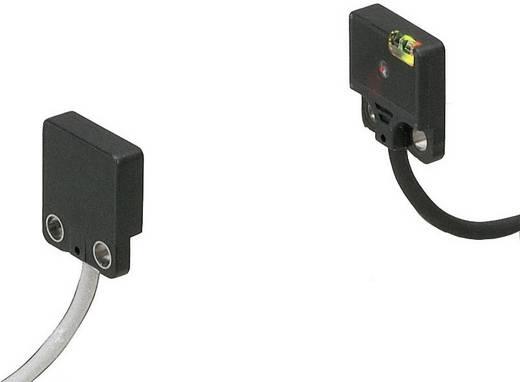 Panasonic EX21BPN Einweg-Lichtschranke Fronttyp dunkelschaltend 12 - 24 V/DC 1 St.