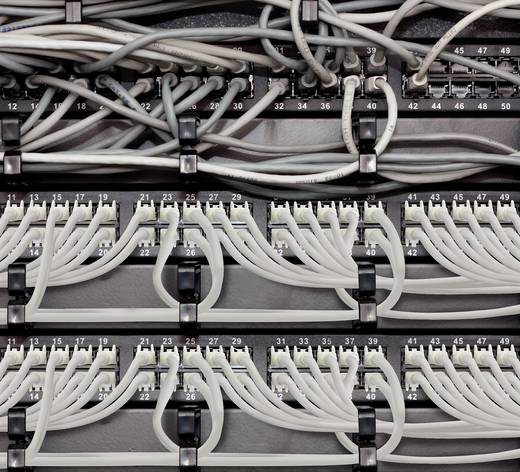 RJ45 Duplex Netzwerk Anschlusskabel CAT 6a S/FTP 5 m Grau Flammwidrig, Duplex, mit Rastnasenschutz Renkforce