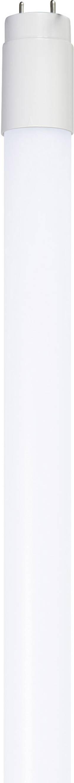 LED Sygonix 230 V, G13, 10 W, 600 mm, studená bílá, A+, 1 ks