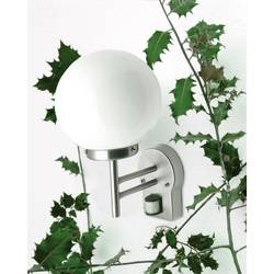 Image of Brilliant Aalborg G44097/82 Außenwandleuchte mit Bewegungsmelder LED E27 6 W Edelstahl