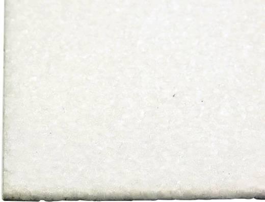 EPP-Platte Pichler (L x B) 595 mm x 895 mm 6 mm
