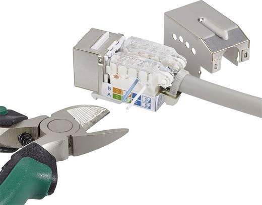 RJ45-Einbaumodul mit Verriegelungsfunktion / inkl. Entriegelungswerkzeug Keystone CAT 6a Renkforce KSV10 + Tooling
