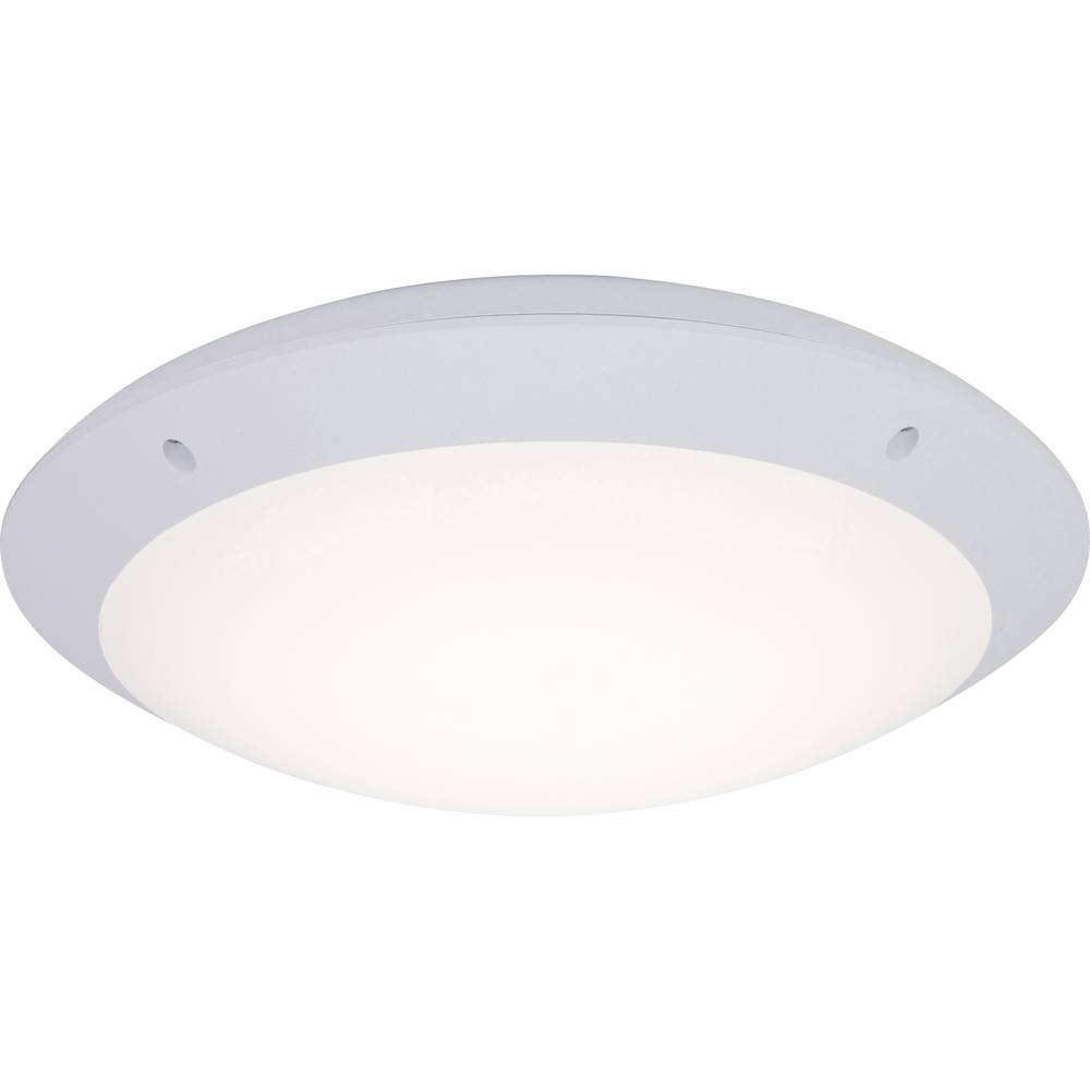 Plafonnier led ext rieur brilliant medway 12 w blanc sur for Plafonnier led exterieur