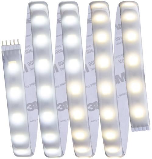Paulmann LED-Streifen-Basisset mit Stecker 230 V 150 cm Warm-Weiß, Neutral-Weiß, Tageslicht-Weiß MaxLED Tunable White 70