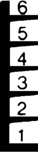 Kragarm-Komplettregal (Grund+Anbau) (B x H x T) 3808 x 2480 x 500 mm Stahl sandgestrahlt, pulverbeschichtet Enzian-Blau