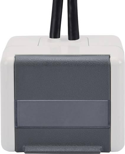 Netzwerkdose Aufputz 2 Port Digitus Professional Grau