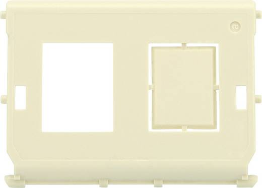 Netzwerkdose Aufputz 2 Port Digitus Professional DN-93844-OD-1 Beige