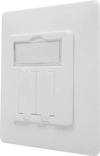 Keystone-Halterung 2-fach Digitus Professional DN-93831 Weiß