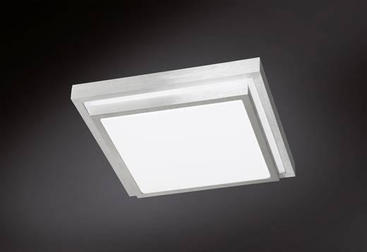 LED-Deckenleuchte 15 W Warm-Weiß ACTION Halden 967201630300 Aluminium (gebürstet)