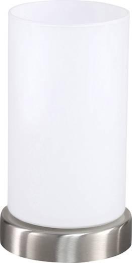 Tischlampe Halogen E14 60 W ACTION LOFT 1FLG 830701649170 Nickel (matt), Glas matt