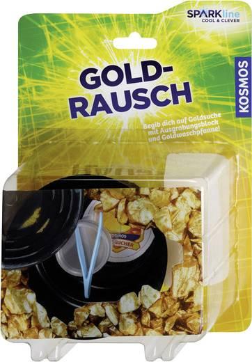 Experimentier-Box Kosmos Goldrausch 650032 ab 8 Jahre