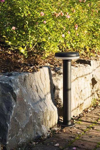 LED-Außenstandleuchte 11 W Warm-Weiß Heitronic 35865 Hawaii Graphit