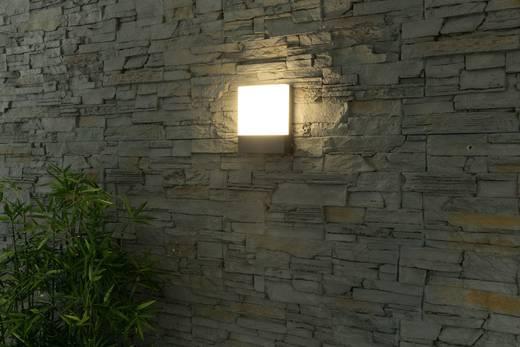 LED-Außenwandleuchte 8 W Warm-Weiß Heitronic Entrada 35377 Graphit