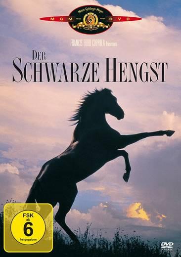 DVD Der schwarze Hengst FSK: 6