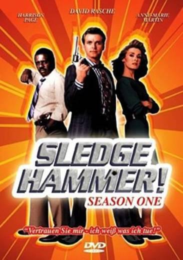 DVD Sledge Hammer FSK: 12