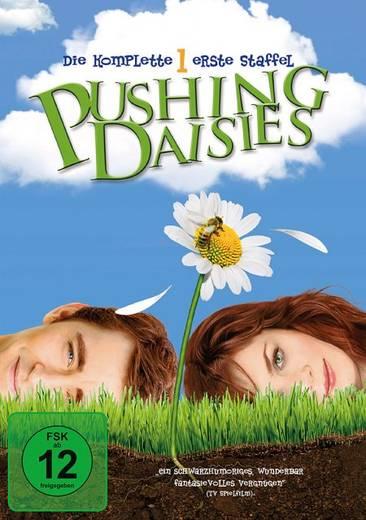 DVD Pushing Daisies FSK: 12