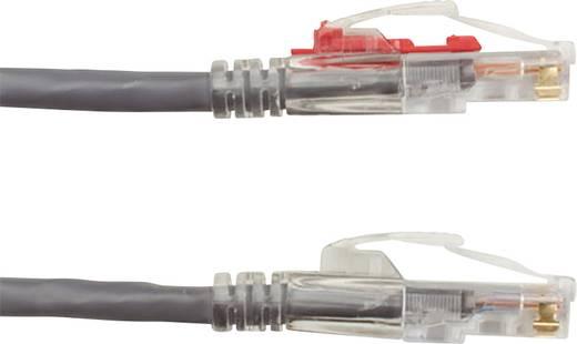 RJ45 Netzwerk Anschlusskabel CAT 6 SF/FTP 1 m Grau verriegelbar, Halogenfrei, mit Rastnasenschutz, vergoldete Steckkonta