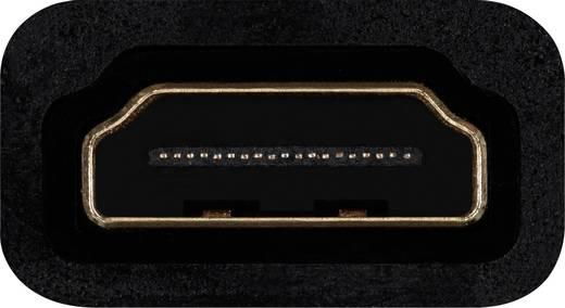 Belkin HDMI / VGA Adapter [1x HDMI-Buchse - 1x VGA-Buchse, Klinkenbuchse 3.5 mm] Schwarz