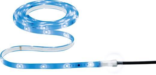 LED-Streifen-Komplettset mit Stecker 12 V 300 cm RGB Paulmann 70698