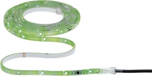 Paulmann LED-Streifen-Komplettset mit Stecker 12 V 480 cm RGB 70699