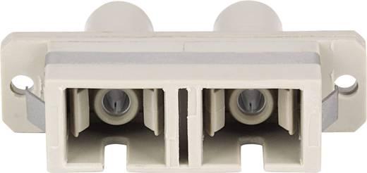 LWL-Kupplung Intellinet 760720 Beige