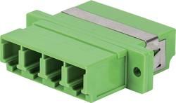 Raccord fibre optique (FO) Intellinet 760591 vert