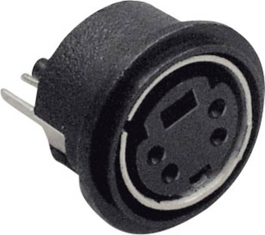 Miniatur-DIN-Rundsteckverbinder Buchse, Einbau vertikal Polzahl: 8 Schwarz BKL Electronic 0204033 1 St.