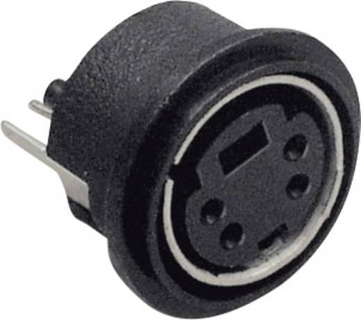 Miniatur-DIN-Rundsteckverbinder Buchse, Einbau vertikal Polzahl: 6 Schwarz BKL Electronic 0204032 1 St.