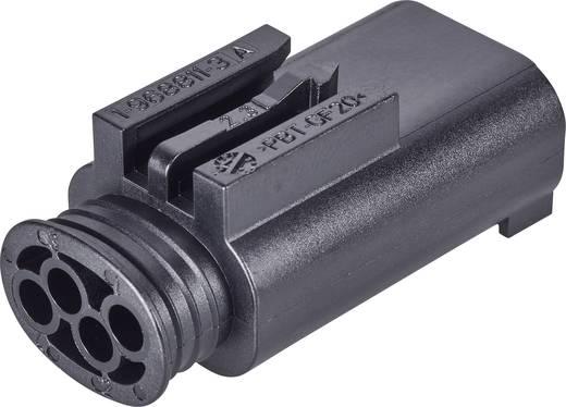 Stiftgehäuse-Kabel AMP MQS Polzahl Gesamt 4 TE Connectivity 1-967584-3 1 St.