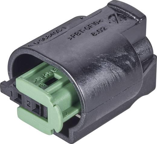 TE Connectivity Buchsengehäuse-Kabel AMP MQS Polzahl Gesamt 3 1-967642-1 1 St.