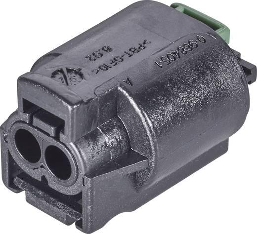 Buchsengehäuse-Kabel AMP MQS Polzahl Gesamt 3 TE Connectivity 2-967642-1 1 St.