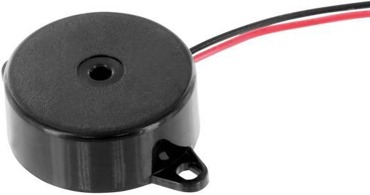 Piezo-Signalgeber Geräusch-Entwicklung: 80 dB 1.5 - 30 V DC Inhalt: 1 St.