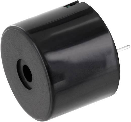 Miniatur Summer Geräusch-Entwicklung: 95 dB Spannung: 12 V Dauerton PSP231295 1 St.