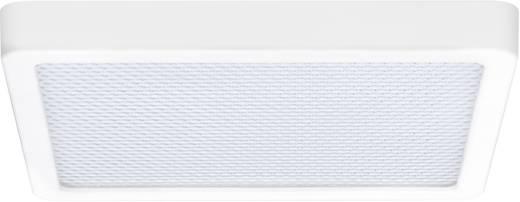 LED-Bad-Deckenleuchte 10 W Warm-Weiß Paulmann 70690 Grid Weiß (matt)