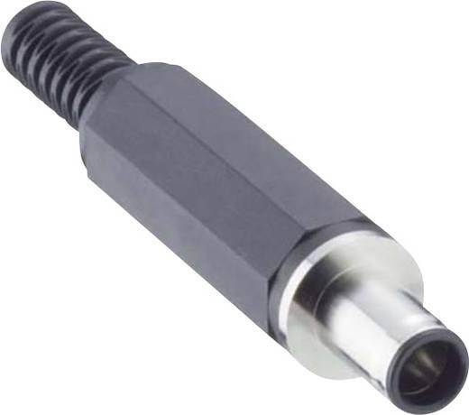 Niedervolt-Steckverbinder Stecker, gerade 5.6 mm 0.9 mm Lumberg 1636 07 1 St.