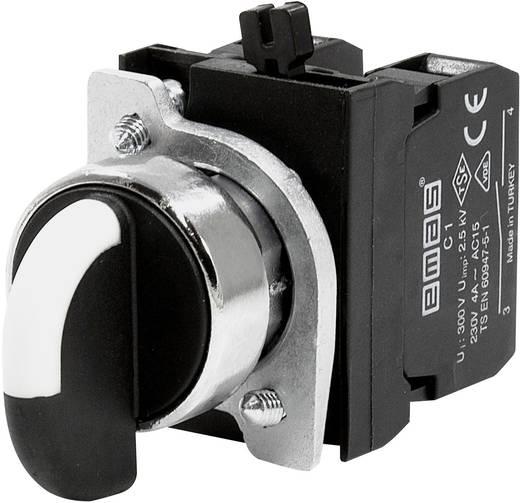 Drehschalter 230 V/AC 4 A 2 x 45 ° EMAS CM101S32 IP65 1 St.