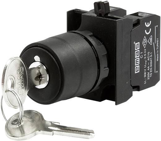 Schlüsselschalter 230 V/AC 4 A 1 x Aus/Ein/Ein 2 x 45 ° EMAS CP102AA30 IP65 1 St.