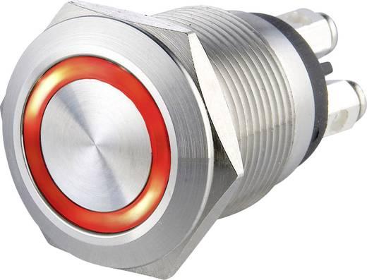 Heidemann 70530 Klingeltaster beleuchtet 1fach Edelstahl 24 V/0,5 A