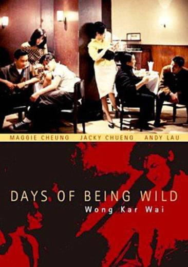 DVD Days Of Being Wild FSK: 12