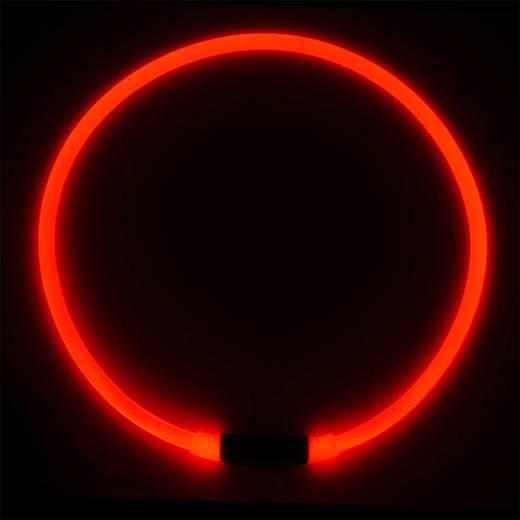 LED Halsbandlicht NITE Ize Nitehowl Transparent, Rot 1 St.