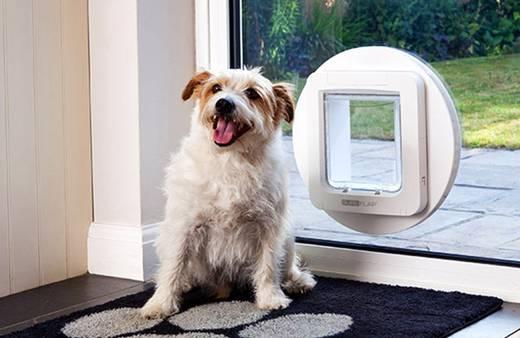 haustierklappe sureflap mikrochip pet door braun 1 st. Black Bedroom Furniture Sets. Home Design Ideas