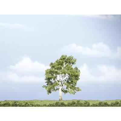 Baum Bergahorn 100 mm Woodland Scenics WTR1609 1 St. Preisvergleich