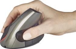 Ergonomická, lze znovu nabíjet bezdrátová myš optická Renkforce RF-4458408, černá, tmavě zelená