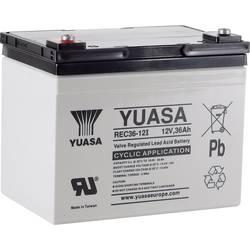 Olovený akumulátor Yuasa REC36-12 YUAREC3612, 36 Ah, 12 V