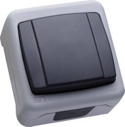 makel schalter steckdosen kombination plus ip44 grau 36064207. Black Bedroom Furniture Sets. Home Design Ideas