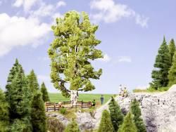 Image of Baum Birke 190 mm NOCH 0021641 1 St.