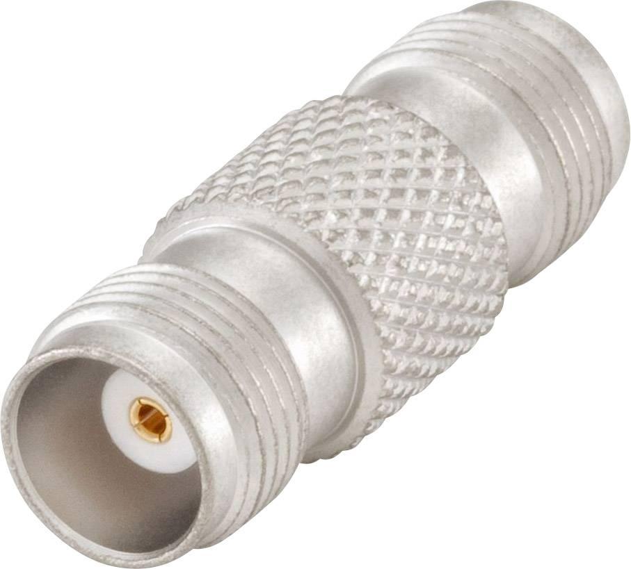 Feinsicherungen 10x =1 Heft Sicherungen 5x20mm Fuse  mittelträge 250V 250mA  #BP