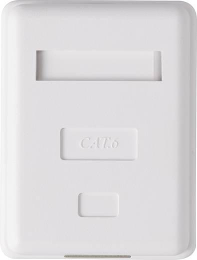 1 Port Netzwerkdose Aufputz CAT 6 Renkforce KSV-ND10 Weiß RF-4473849