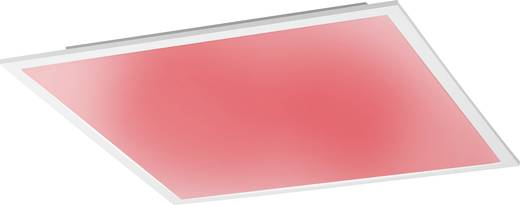 led panel 41 w rgb warm wei paul neuhaus flat 14632 16. Black Bedroom Furniture Sets. Home Design Ideas